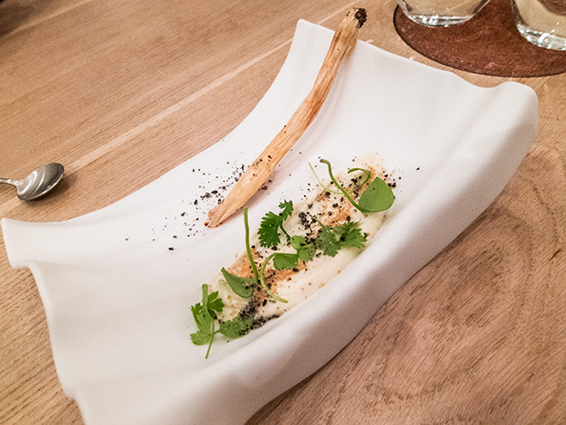 David Toutain - Salsifis, crème de panais au chocolat blanc