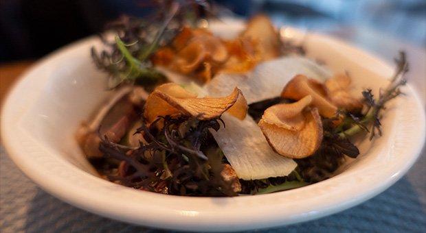La Prohibition - Gésiers de Canard confits, quinoa et Pommes de Terre Grenailles